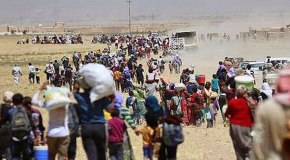 IDPs in Iraq and the progress of the Islamic State: An interview with Hebatalla Taha (IISS)