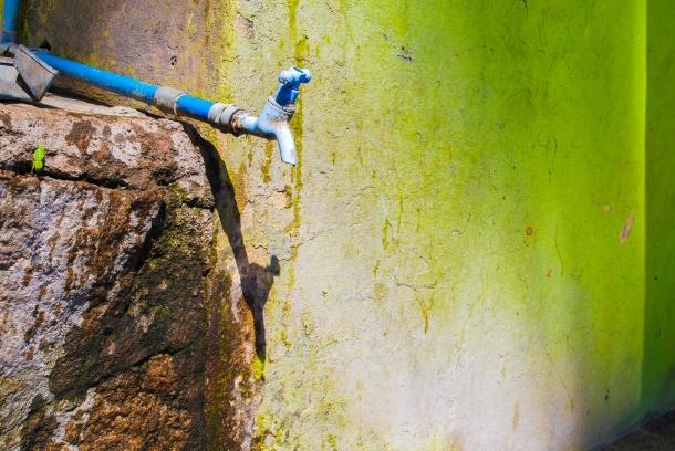 Paula Hanasz - leaking tap in India